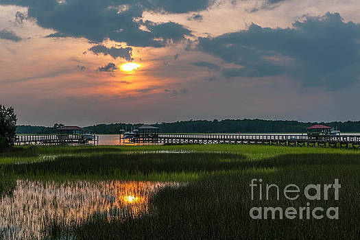 Dale Powell - Thriving Beauty of the Lowcountry
