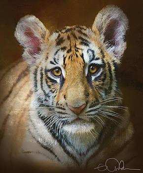 Tiger Cub by Gloria Anderson