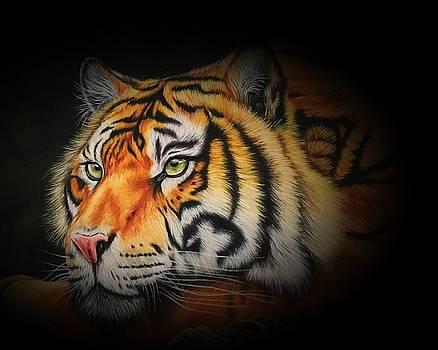 Lili Tiger nude 394