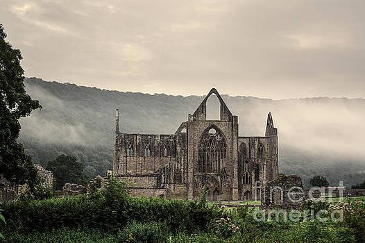 Tintern Abbey by Simon Pocklington