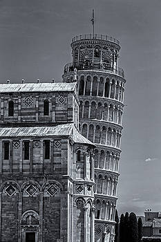 David Pringle - Torre di Pisa