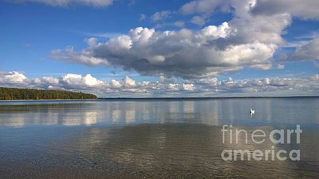 Traverse Bay by Lisa Dionne