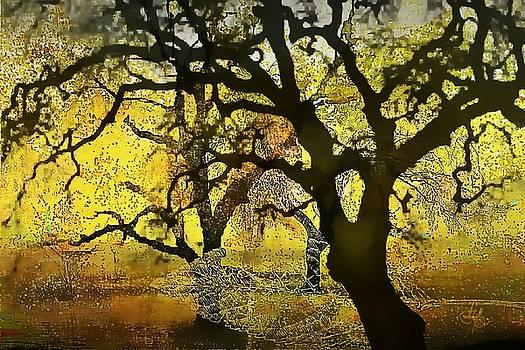 Tree Deconstructed 5 by Lynda Payton