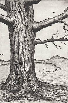 Erik Paul - Tree