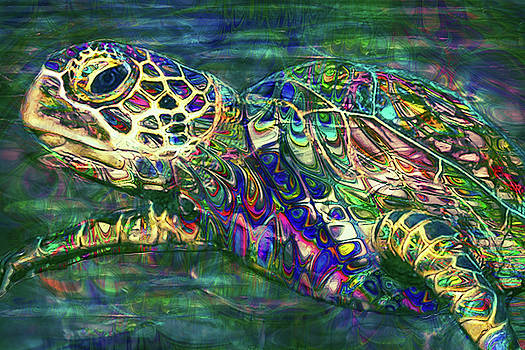 Tropical Sea Turtle 2 by Jack Zulli