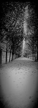 Cyril Jayant - Tuileries Garden In Paris