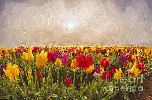 Tulip Field by Billie-Jo Miller