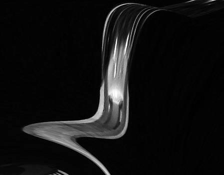 Tulip by Vilma Zurc