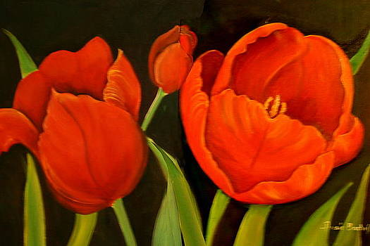 Tulips by Ansie Boshoff