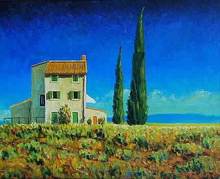Tuscan Farmhouse by Santo De Vita