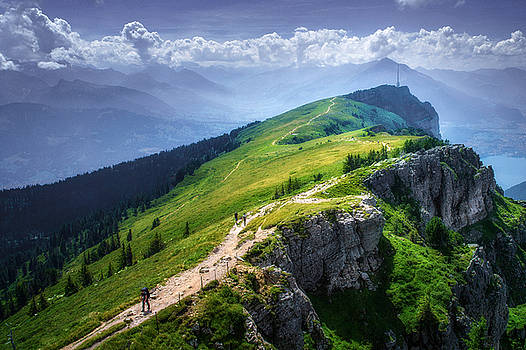Up the Niederhorn by Mohsen Kamalzadeh