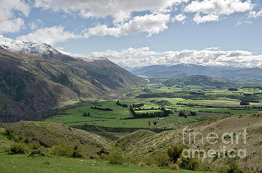 Valleys and Meadows of New Zealand. Springtime. Queenstown area. by Yurix Sardinelly