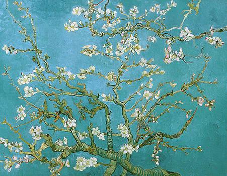 Van Gogh Blossoming Almond Tree by Vincent van Gogh