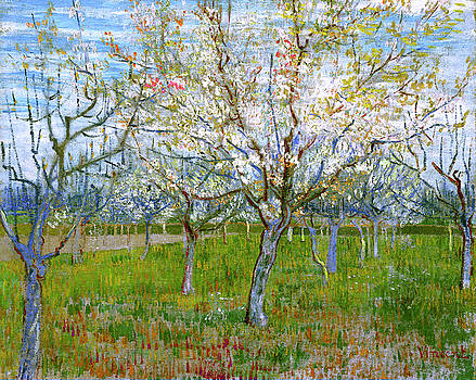 Van Gogh The Pink Orchard by Vincent van Gogh