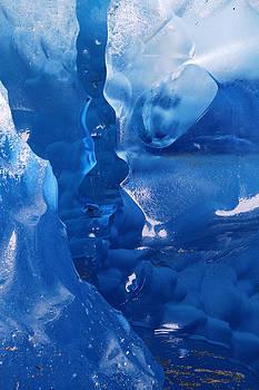 Viedma Glacier Argentina by Kurt Williams