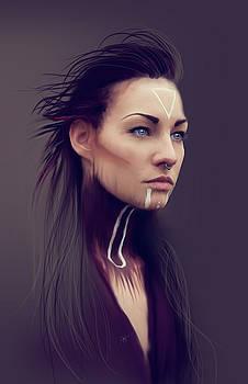 Viking by Jason Longstreet