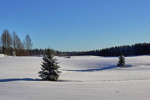 Viljakkala filelds by Jouko Lehto