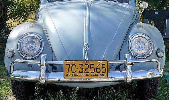 Vintage Beetle by Laurie Perry