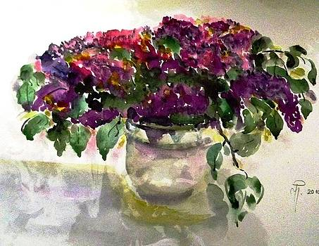 Violet by Hedwig Pen