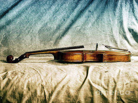 Violin in Repose  by Steven Digman