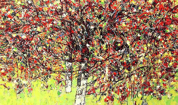 Vivaldi spring by Vladimir Vlahovic