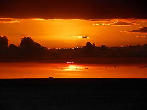 Elizabeth Hoskinson - Waikiki Sunset II