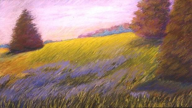 Mary Erbert - Washington on the Brazos 3