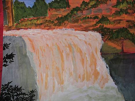 Water Fall 4 by Ram Reddy Sudi Reddy