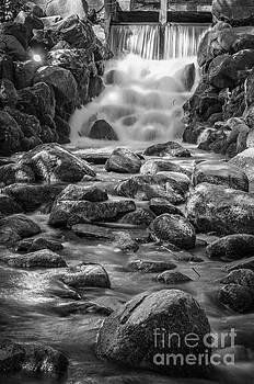 Mariusz Talarek - Waterfall in Gdansk Oliwa Park BW