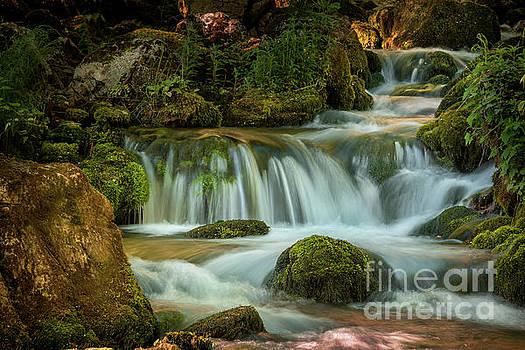 Waterfall by Jelena Jovanovic