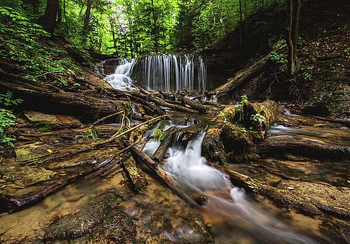 Weavers Creek Falls by Cale Best