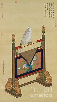 White Falcon by Giuseppe Castiglione