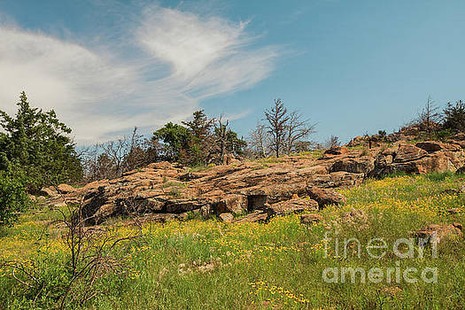 Wichita Mountains in Springtime by Iris Greenwell