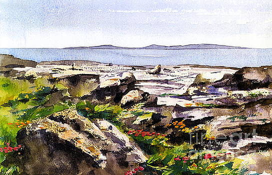 Val Byrne - Wild flowers in the Burren, Clare.