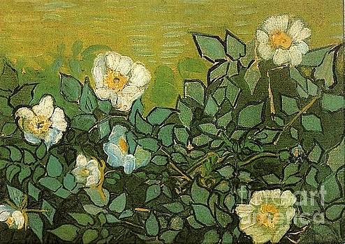 Van Gogh - Wild Roses