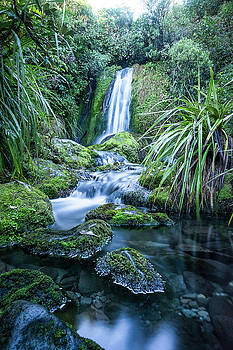 Wilkies Pools Taranaki by Russ Dixon