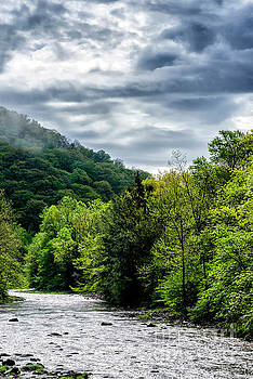 Williams River in Spring by Thomas R Fletcher