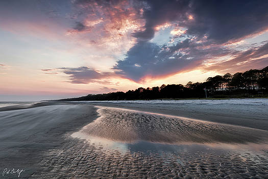 Wind Swept Beach by Phill Doherty