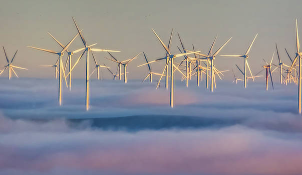 Marc Crumpler - Wind Turbines in Fog