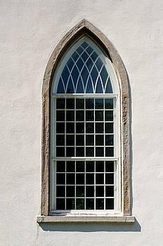 Window by Carl Nielsen