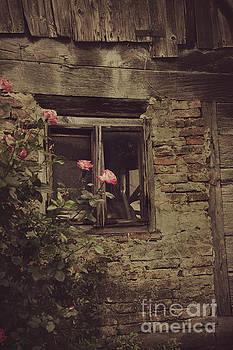Window by Mythja Photography