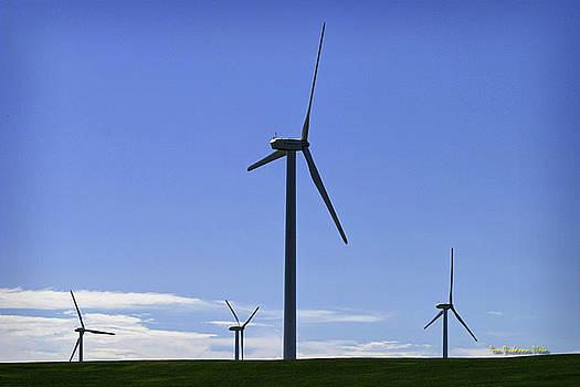 Windy Power by Tom Buchanan