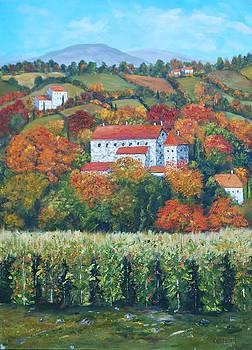 Wine Fields by Brian Hustead