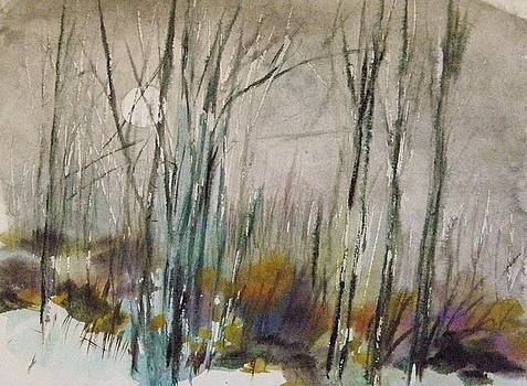 Winter Afternoon by John Williams