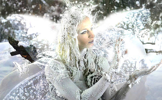 Winter fairy by Cliff Nixon