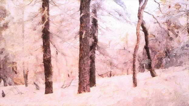 Winter Forest by Lelia DeMello