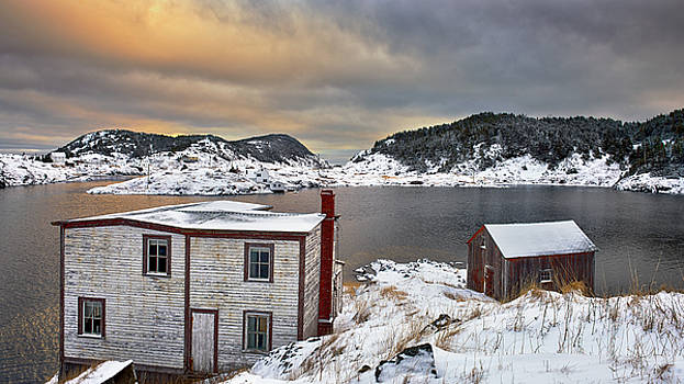 Winter in the Harbour by Spencer Dove