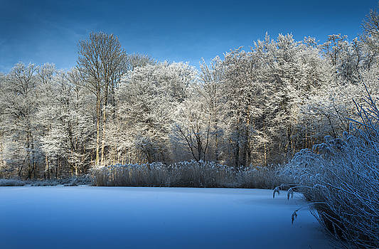 Winter landscape 4  in France by Eric Bauer