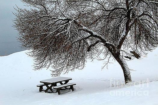 Roland Stanke - winter picnic
