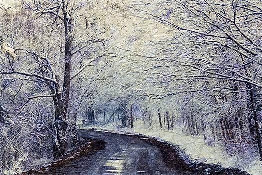 Winter scene by John Stuart Webbstock